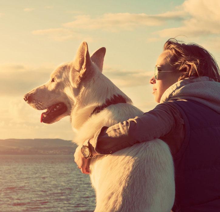 Kochamy psy tak jak Ty